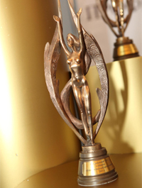 Національний приз в області професійної косметології