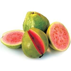 Але у гуави є не тільки корисні властивості, але цей фрукт може принести і шкоду.