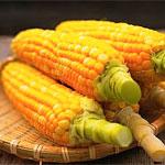 властивості кукурудзи