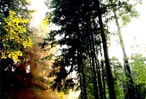 відпочинок в Брестській області