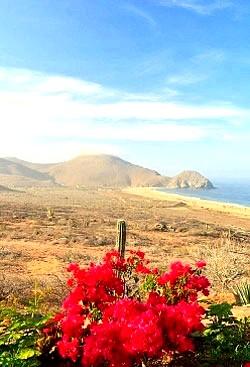 подорож по Мексіці