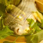 властивості і користь риб'ячого жиру