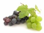 Історія винограду і його корисні властивості
