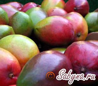 eczotic-frukt_1