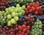 vinograd-polza